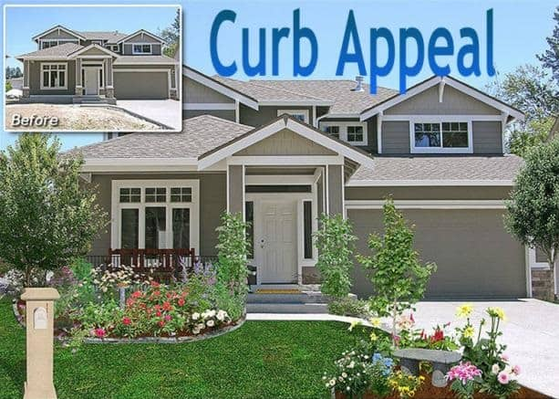 Curb Appeal Boosters for Budget-Minded Homeowners
